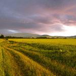 vihohrad zapad slnka